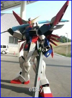 Full size GUNDAM DESTINY COSPLAY ARMOR COSTUME painted all plastic suit Japan