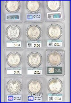Lot of 12 Different Morgan Silver Dollars All PCGS MS 64 ONE OLD GREEN HOLDER